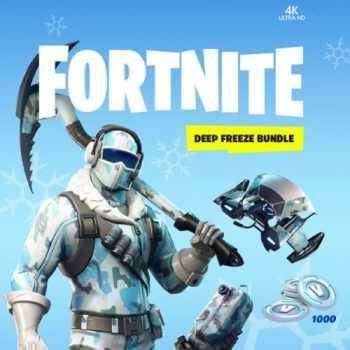 fortinte-deep-freeze-bundle-switch